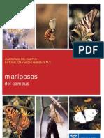 3_Mariposas