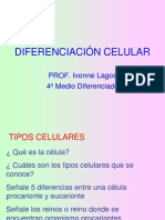 _2__DIFERENCIACI_N_CELULAR.ppt