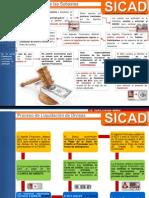 Procedimiento de Subasta y Liquidacion en el SICAD