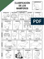 Clasi_mamiferos