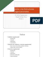 El Ambiente y Las Estructuras Organizacionales b1
