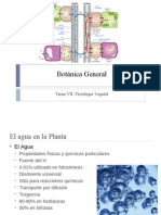 Tema VII Botanica General Fisiología Vegetal Parte I