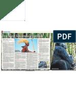 Tracking Rwanda's Gorillas