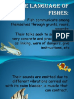 The Language of Fishes