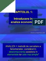 01_Introducere in Analiza Economica