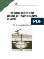 Manual Recuperacion de Crudos Pesados Por IAV