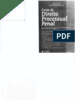 Nestor Tavora Curso de Direito Processual Penal 2011.44,Oo
