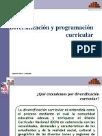 16+DIVERSIFICACIÓN+Y+PROGRAMACIÓN+CURRICULAR