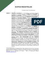 PRINCIPIOS REGISTRALES (1)