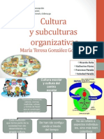 Cultura y Subculturas Organizativas