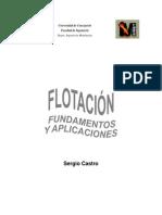 Flotacion - Fundamentos (Sergio Castro)