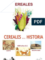 cereales proteinas
