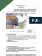 HOJAS DE CAMPO-E.I.A.-CursoI.A.3013.pdf