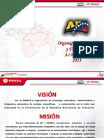 Organigrama Funcional y Organizacional AIT DiancaEnero2013