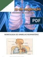 Biofísica da Respiração