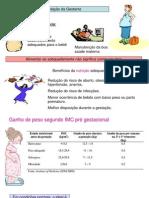 alimentação da gestantehorizontal