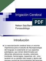 Irrigación Cerebral