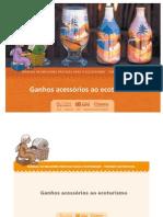 EcoBrasil Manual MPE Mod6 GanhosAcessorios