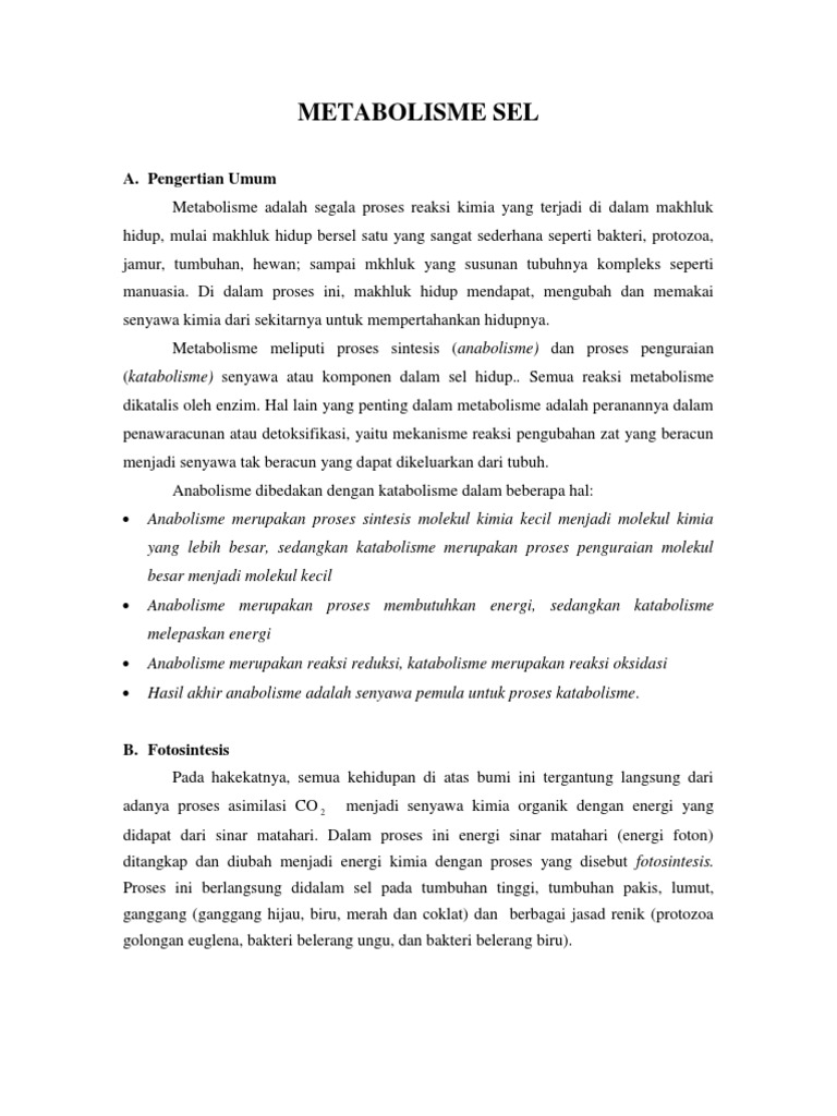 Metabolisme sel 1533000210v1 ccuart Choice Image
