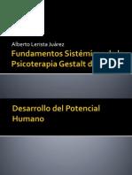 Fundamentos Sistémicos de la Psicoterapia Gestalt de Grupo