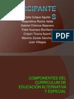 Componentes Del Curriculum Alternativa y Especial
