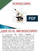 Micros y Esteroscopio