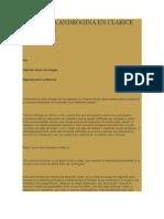 Escritura Androgina en Clarice Lispector