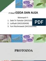 Kel.4 Pbr 2010 Protozoa Dan Alga