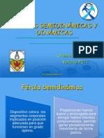 FÉRULAS SEMIDINÁMICAS Y DINÁMICAS'7