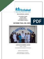 Informe Final Serums 2012