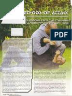Four Methods of Attack (Xing Yi Quan)