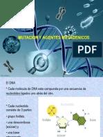 Genetica- Mutacion Clase 4 CBA