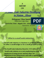 A Small Scale Industry Devlop in Nation