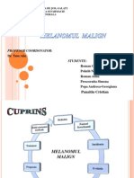 Proiect Melanomul Malign