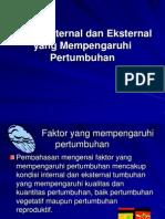 Faktor Internal dan Eksternal yang Mempengaruhi Pertumbuhan.ppt