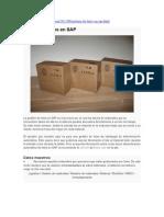 Gestión de lotes en SAP.doc