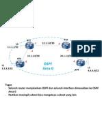 case-ospf