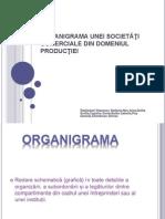 Organigrama unei societăţi comerciale din domeniul producţiei