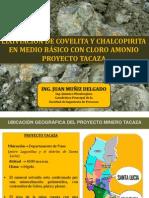 LIXIVIACIÓN DE COVELITA Y CHALCOPIRITA EN MEDIO BÁSICO CON CLORO AMONIO_10 agosto.pdf
