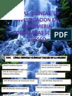 Areas y Lineas de InvestigaCIon Segun Unesco 2 3 (1)