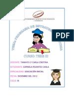 Informe Del Programa Didactico VER