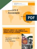 sociologiaii-aula1-culturaesociedade-110820084225-phpapp02.pdf
