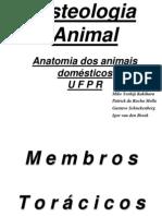 51941714 Osteologia Animal 2