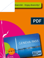 Geneva Pass Flyer