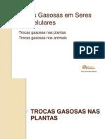 26-trocas gasosas.ppsx