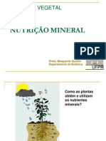 NUTRIÇÃO MINERAL.pdf