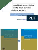 Ajuste Curricular 5 Sectores