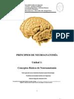 Modulo i Kine Pucv Bio129 2012