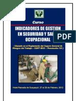 Curso Indicadores de Gestion en Seguridad y Salud Ocupacional