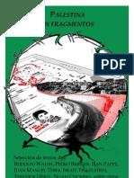 Palestina en Fragmentos - Rodolfo Walsh, Pedro Brieger, Illan Pappè, Noam Chomsky y otros